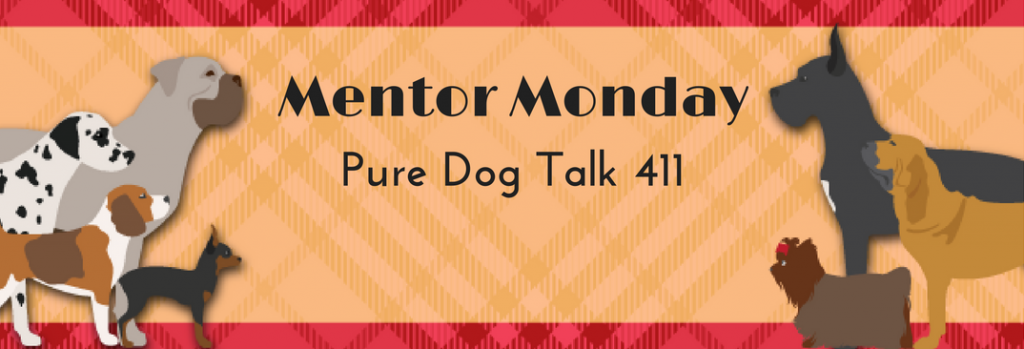 Pure Dog Talk 411