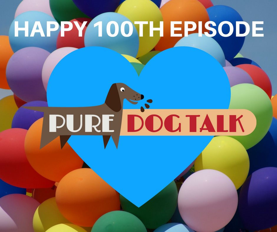 Pure Dog Talk 100