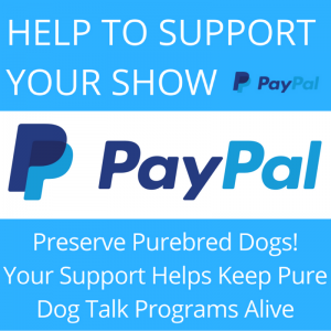 pure dog talk paypal