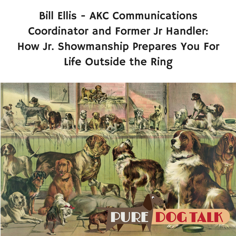 Bill Ellis Junior Showmanship