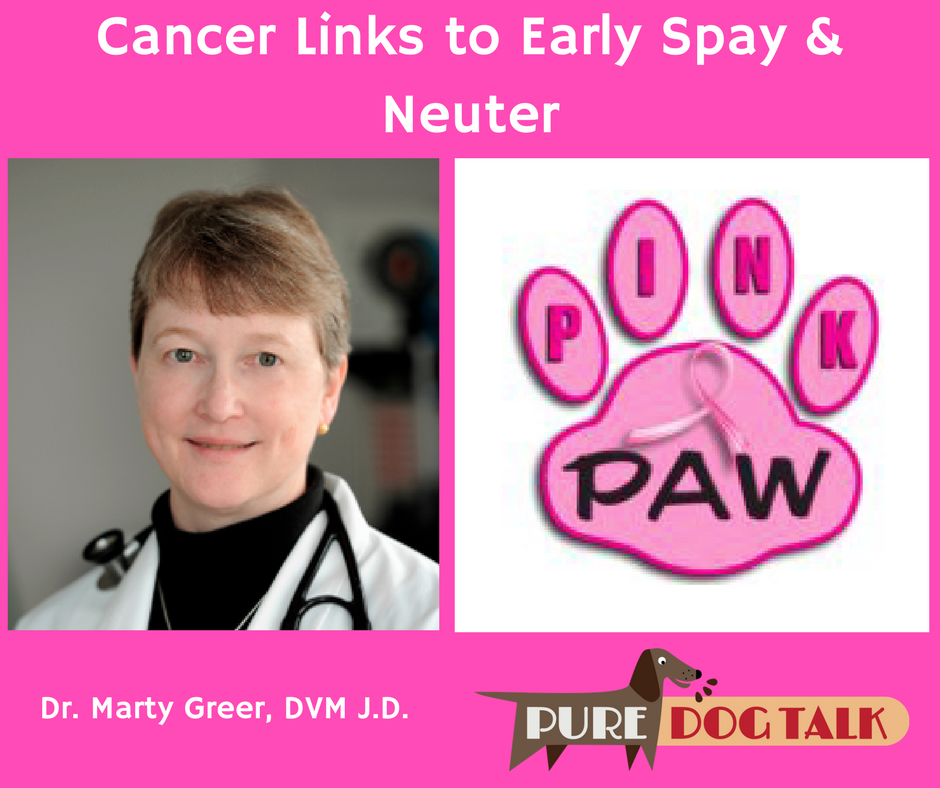 Dr. Marty Greer Cancer Links to Early Spay & Neuter