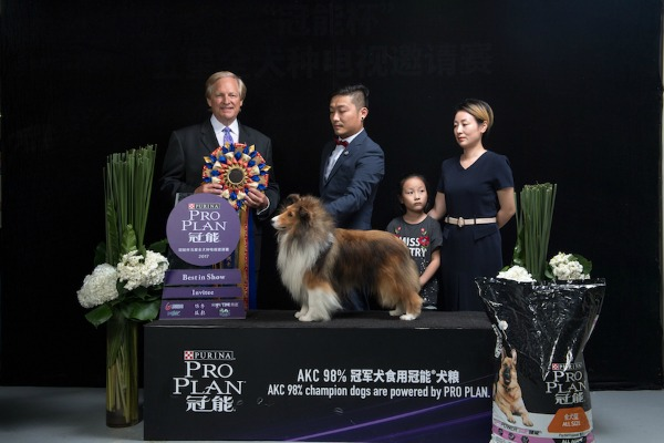 David Frei Judging Best in Show Sheltie in Shanghai China
