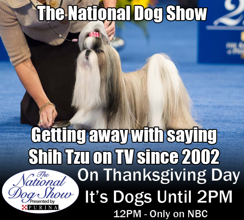 NBC National Dog Show