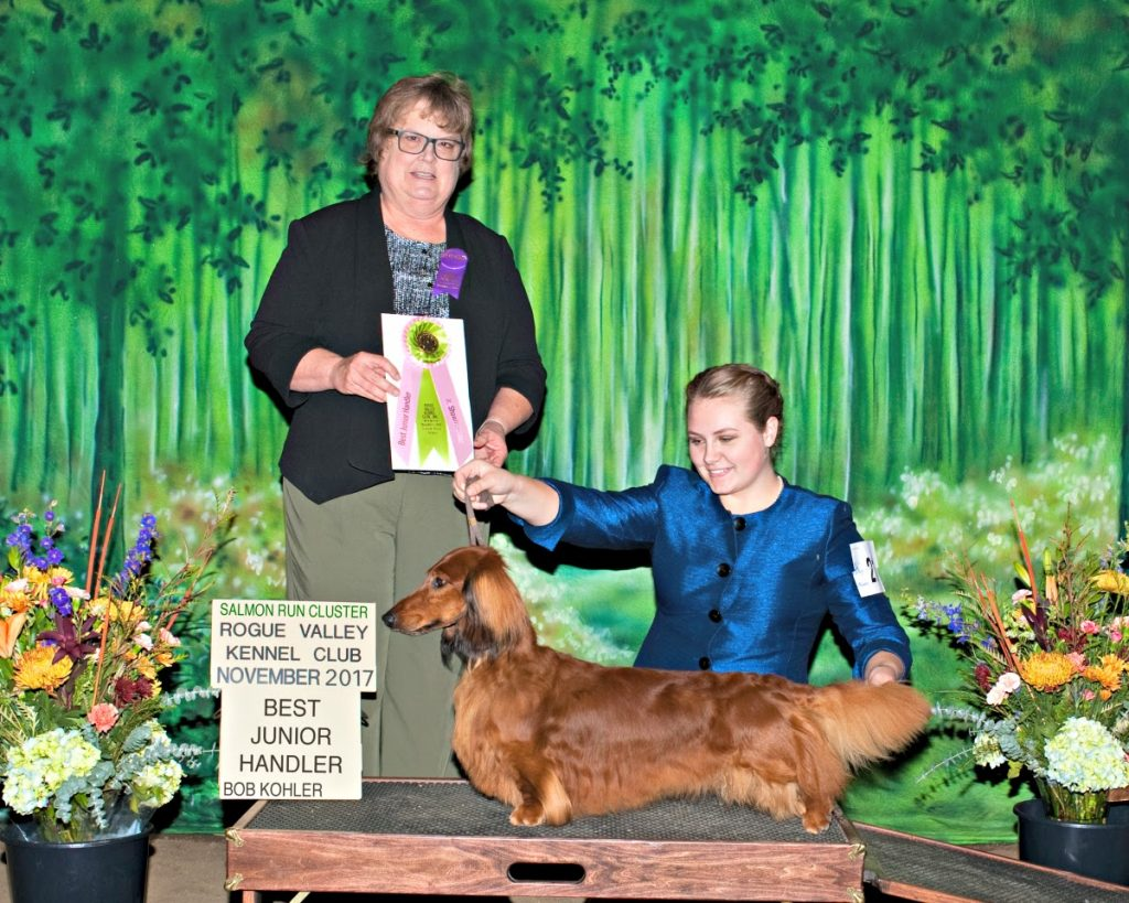 Junior Showmanship Gillian McKim Best Jr Handler