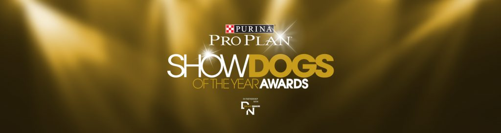 Show Dog Awards