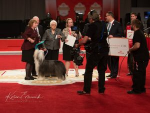 Pat Laurans Judging NOHS BIS - Photo by Karen Evasuik