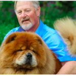 "173 – Dreamland Chow Chows ""Show Ring is Mirror of the Whelping Box"" 