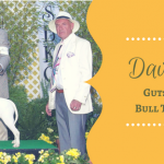 184 – Merriam: Guts and Governance, the Bull Terrier, Breeders | Pure Dog Talk