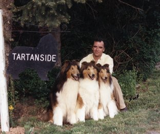 Three generations...Am/Can Ch. Tartanside Apparently ROM, his dam Ch. Tartanside Fairwind Fantasy ROM, and his daughter Ch. Grand Hill Heirloom (BOS CCA 1990)