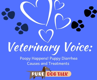 Veterinary Voice_ (6)
