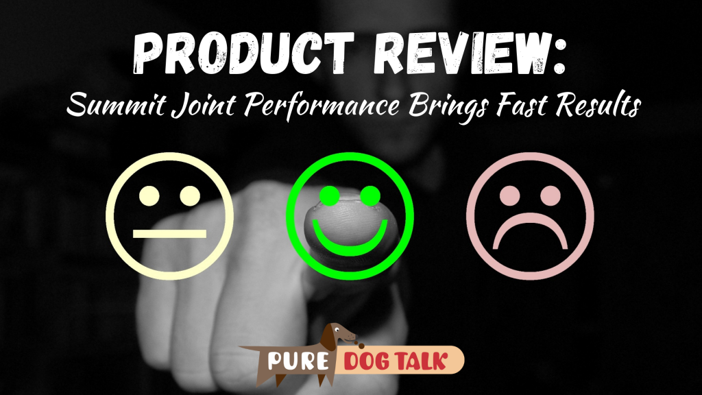 Product Review (1)