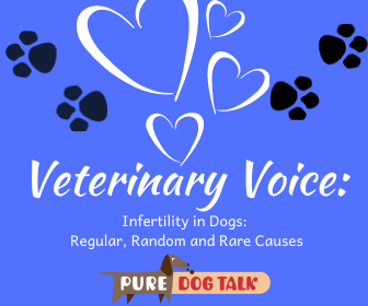Veterinary Voice_ (1)