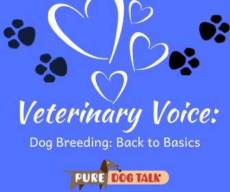 Veterinary Voice_ (3)