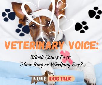 Veterinary Voice (1)