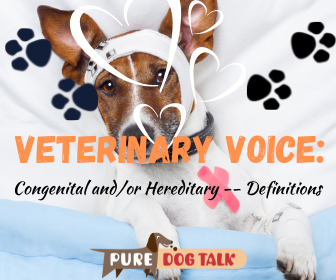 Veterinary Voice (2)