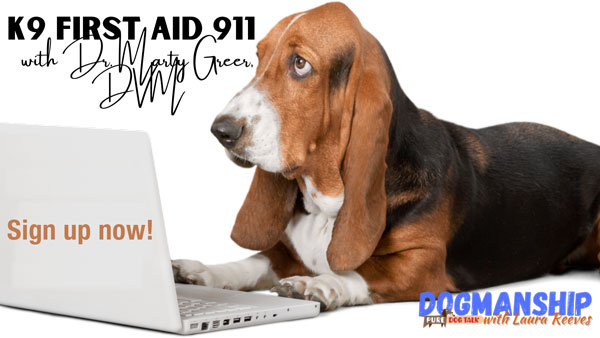 First-Aid-911-(1)