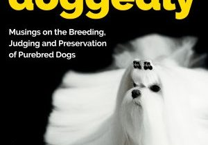 DOGGEDLY Front Cover