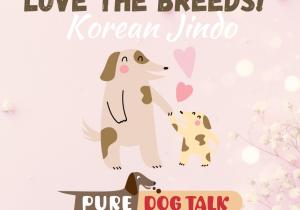 Love the Breeds! Korean Jindo