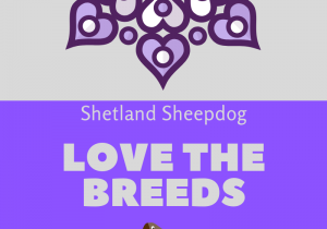 Love the breeds (1)