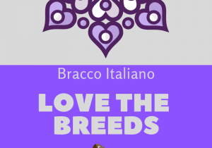 Love the breeds