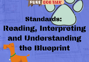 Standards_ Reading, Interpreting and Understanding the Blueprint
