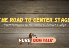 The Road to Center Stage