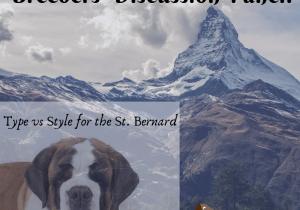 Type vs Style in the St. Bernard