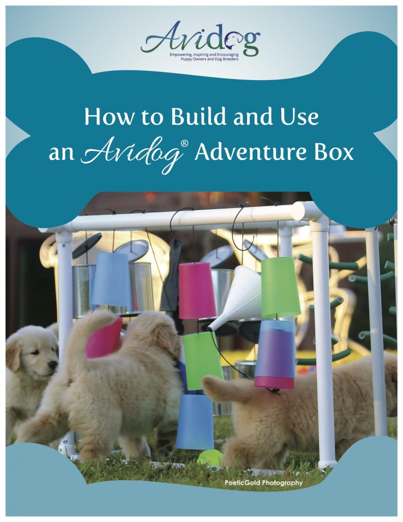 How To Build and Use An Adventure Box
