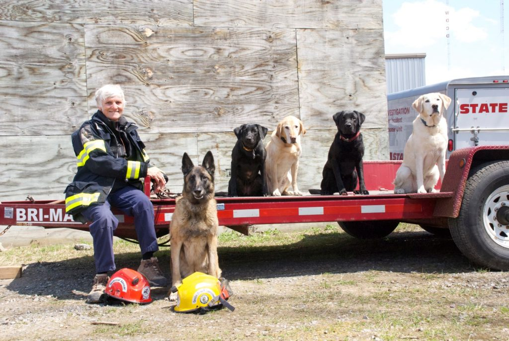 Lani, Sadie, Bonnie, Dax, Marsi & Pluis posed Albany training HI 4-26-13 Castaldo (Large)