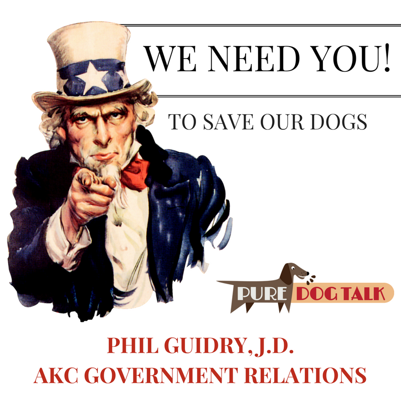AKC Government Relations