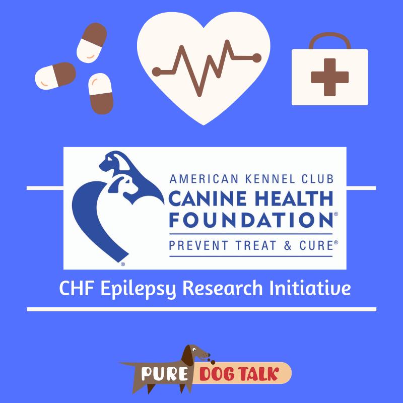 CHF Epilepsy Research Initiative