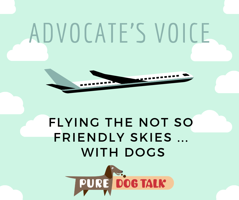 advocate's voice (1)